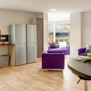 09-fresh-student-living-kingston-davidson-house-03-shared-flat-living-area-photo-01-990×411.jpg